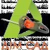 Бензиновые ножницы для живой изгороди HUSQVARNA 122HD45 (9665323-01)